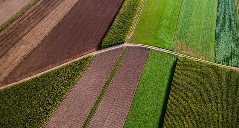 Geography Story: #7 Symmetry in agricultural fields
