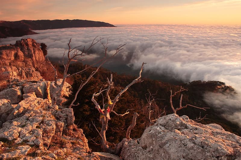 Geography Story: #1 Dawn on Ai-Petri Mountain, Crimea, Ukraine by Katya Krasnickaja - 1st place, 2013