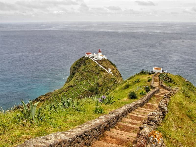 Nature Story: Santa Maria Azores