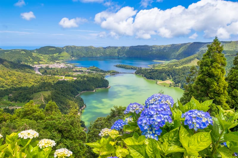 Nature Story: Sao Miguel Azores
