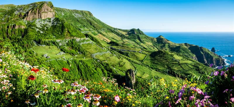 Nature Story: Flores Island Azores