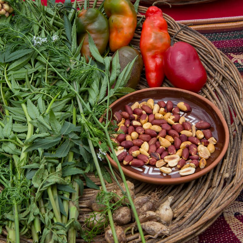 Culture Story: #4 What did the Incas eat?