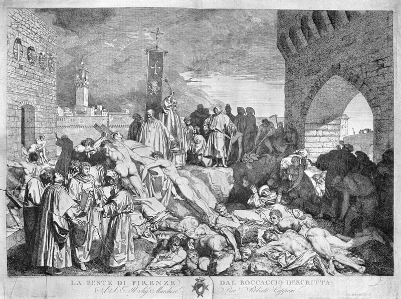 History Story: Black Death Great Bubonic Plague diseases throughout history pandemic outbreaks dangerous diseases bubonic plague spread of the disease