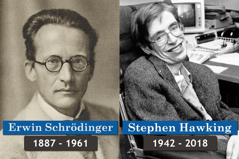 History Story: Unlikely historical contemporaries: Erwin Schrödinger and Stephen Hawking