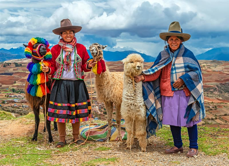 Nature Story: Do alpacas spit? Do llamas spit?