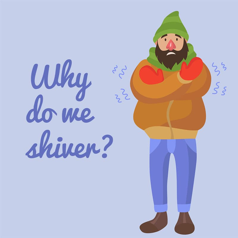 Science Story: Why do we shiver when cold?