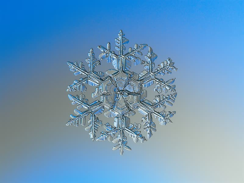 Science Story: #2 Different types of snowflakes appear depending on the environment