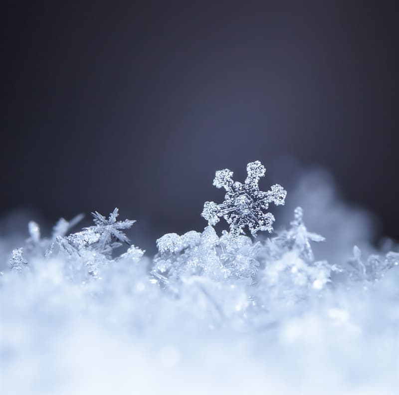 Science Story: #3 Snow can be classified as a mineral