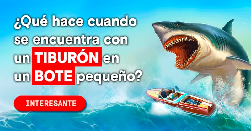 Deporte Historia: ¿Qué hace cuando se encuentra con un tiburón en un bote pequeño?