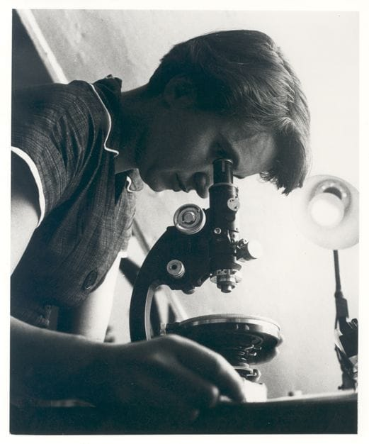 Science Story: #3 Rosalind Franklin, an English chemist and X-ray crystallographer