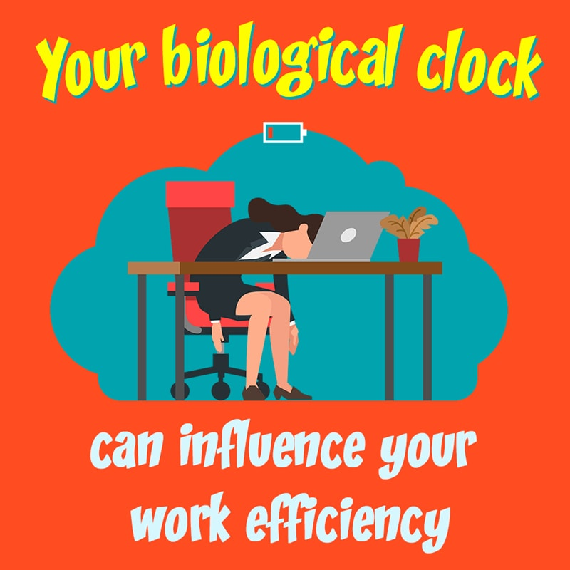 Personality Story: #5 Scientists say, our work efficiency depends on the circadian rhythms.