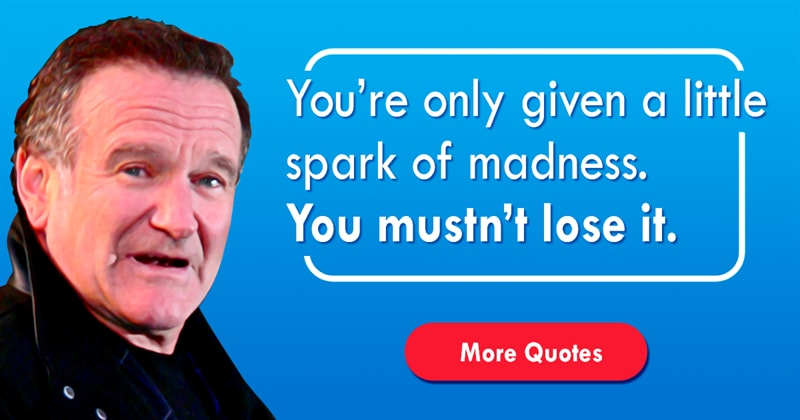 Movies & TV Story: Best Robin Williams quotes about life
