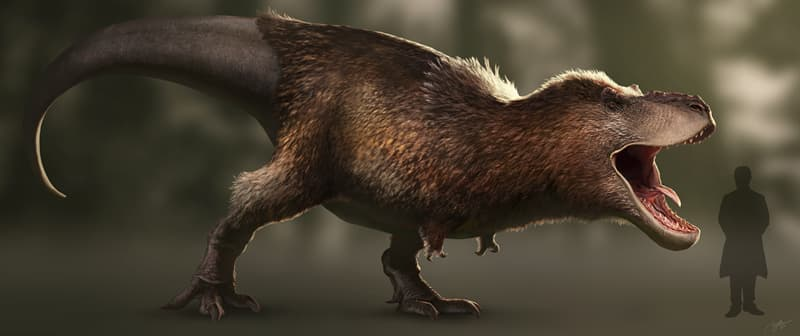 History Story: appearance of dinosaurs feathers Dinosaur facts unusual dinosaurs jurassic park history