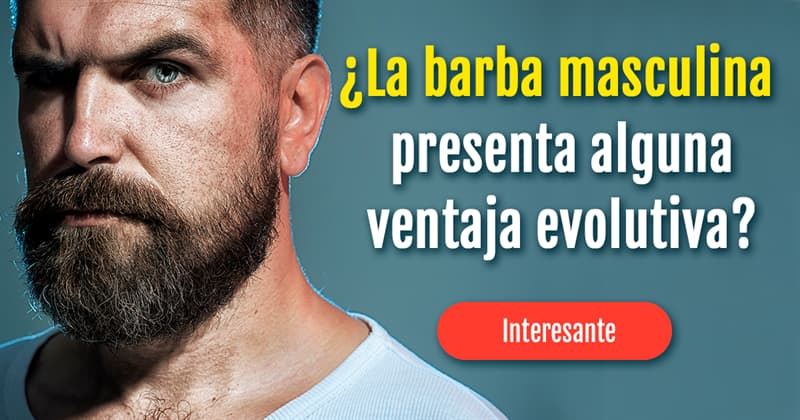 Сiencia Historia: ¿La barba masculina presenta alguna ventaja evolutiva? ¿Por qué esta ahí?