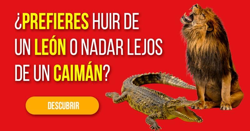Naturaleza Historia: ¿Prefieres huir de un león o nadar lejos de un caimán?