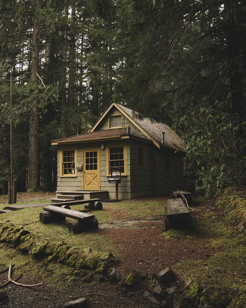 Culture Story: cozy cabin cabin in the woods small cabin interiors small cabin ideas cabin in the middle of nowhere cabin pictures pictures of cabins in the woods cabin pictures inside
