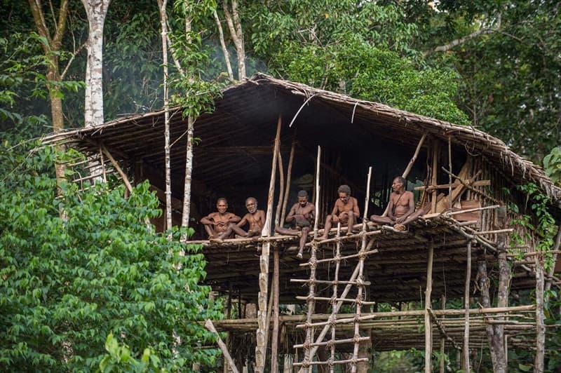 Geography Story: #1 Korowai Tree House, New Guinea
