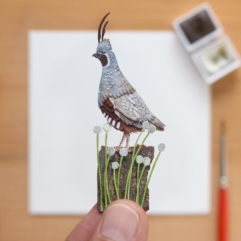 animals Story: Mountain Quail paper birds what's your hobby paper crafts