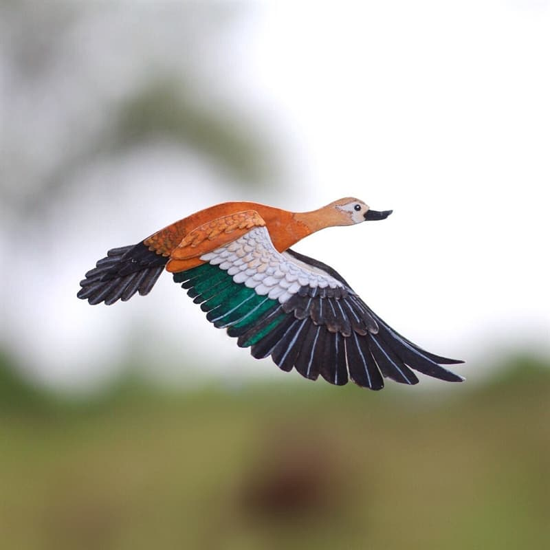 animals Story: Ruddy shelduck paper birds what's your hobby paper crafts