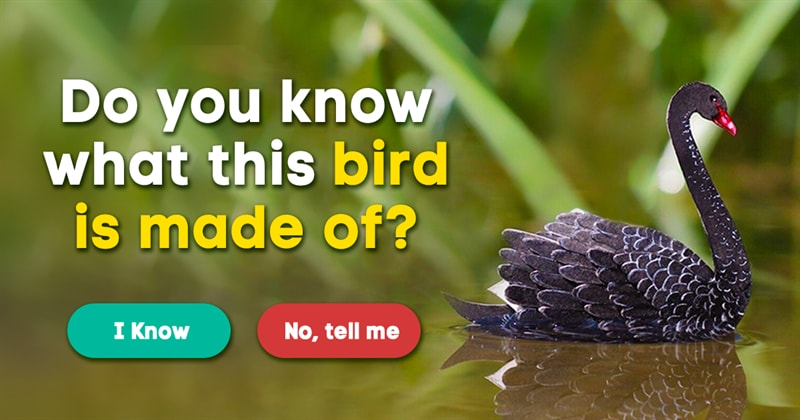 animals Story: What are these miniature birds made of?