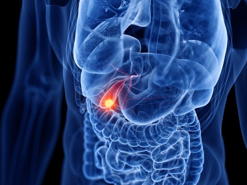 Science Story: #3 Gallbladder
