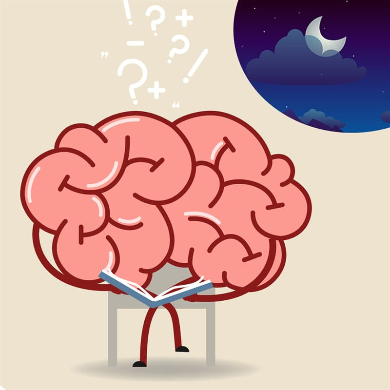Science Story: #1 Your brain processes the day's experiences and make you forget useless information