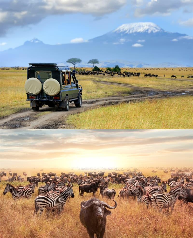 Geography Story: 6. Serengeti National Park