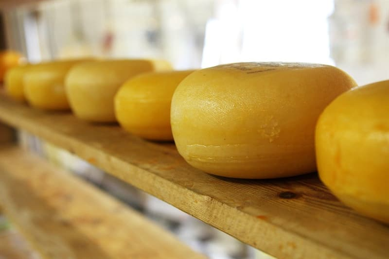 Culture Story: #3 Cheese can trigger the same brain receptors as drugs do