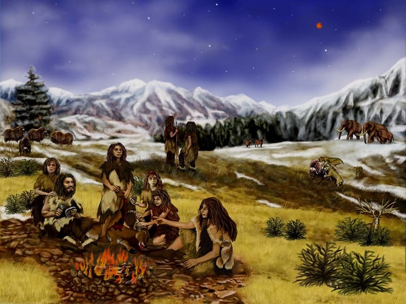 Culture Story: #3 Europeans bred with Neanderthals