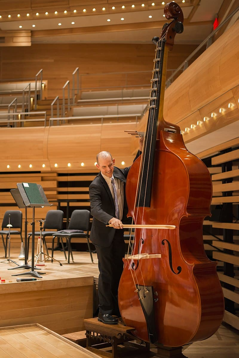 Culture Story: #2 You'll have to be a giant in order to play this octobass.