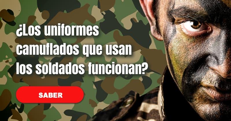 Animales Historia: ¿Los uniformes camuflados que usan los soldados funcionan?