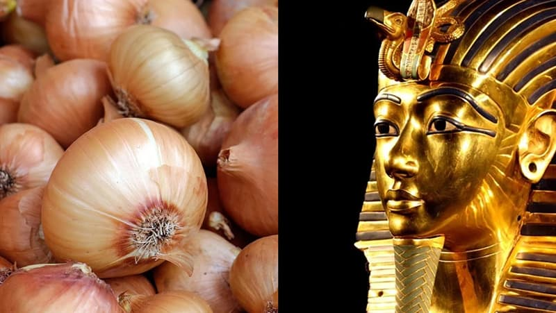 Science Story: #6 Onions were believed to promote eternal life