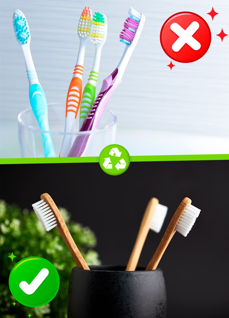 Science Story: #4 Toothbrushes