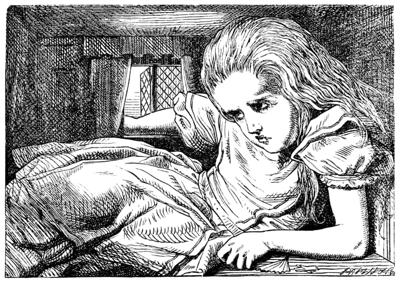 Geography Story: #4 'Alice in Wonderland' is also a disease