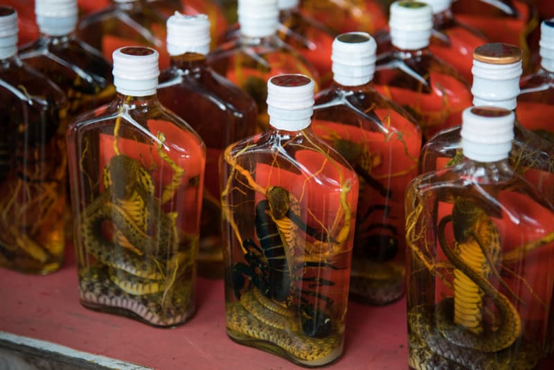 Geography Story: #3 Snake wine is a popular drink and medicine