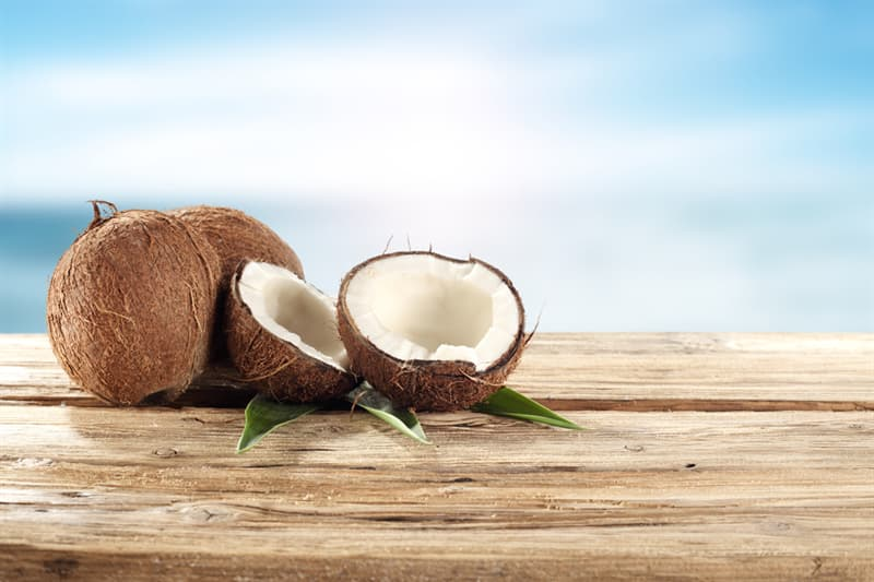 """Nature Story: #1 The word coconut comes from the Portuguese word """"coco"""" which means head or skull"""