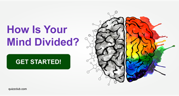Personality Quiz Test: How Is Your Mind Divided?