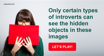 funny Quiz Test: Only Certain Types Of Introverts Can See The Hidden Objects In These Images