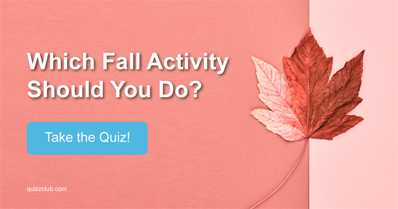 Which Fall Activity Should You Do?