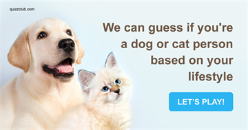 Quiz Test: We Can Guess If You're A Dog Or Cat Person Based On Your Lifestyle