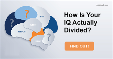 Quiz Test: How Is Your IQ Actually Divided?