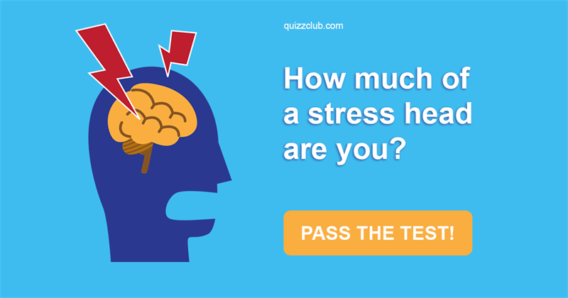 Test: How Much Of A Stress Head Are You?