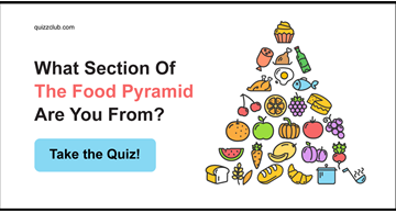 Personality Quiz Test: What Section Of The Food Pyramid Are You From?