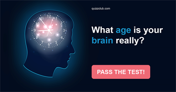 Personality Quiz Test: What Age Is Your Brain Really?