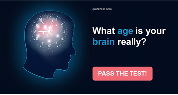 Quiz Test: What Age Is Your Brain Really?