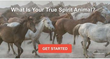 Quiz Test: What Is Your True Spirit Animal?