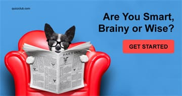 Quiz Test: Are You Smart, Brainy or Wise?