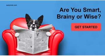 Personality Quiz Test: Are You Smart, Brainy or Wise?