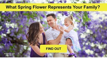 Nature Quiz Test: What Spring Flower Represents Your Family?
