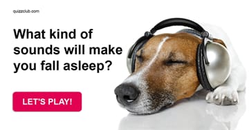 Quiz Test: What Kind Of Sounds Will Make You Fall Asleep?